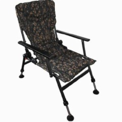 Fishing Chair with Armrests